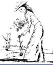 Reiki Training - Tera Mai Reiki Seichem